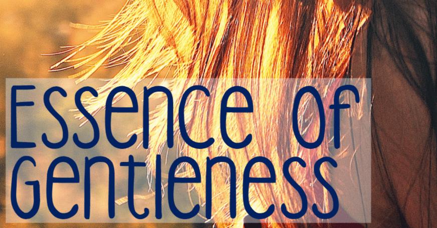 Essence Of Gentleness