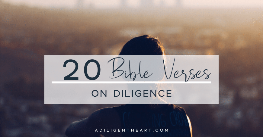 20 Bible Verses on Diligence