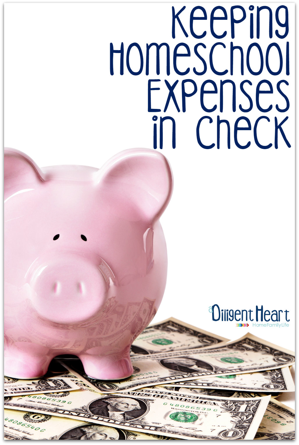 Ever wonder what it costs to homeschool and how to keep homeschool expenses in check? In this post I share our homeschool expenses, along with a few tips that help me keep our finances in line.   adiligentheart.com