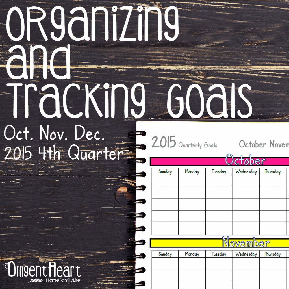 I have different methods of staying on track of my goals, and one of them involves keeping everything down on paper! It's essential to help me brain-dump and get things in order. Do you need help staying on top of your goals? Maybe you need a place to jot them down and the ability to keep yourself accountable by tracking your progress. With these sheets, you're totally going to be able to do that! | adiligentheart.com