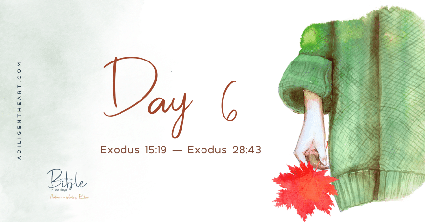 Day 6: Read The Bible In 90 Days